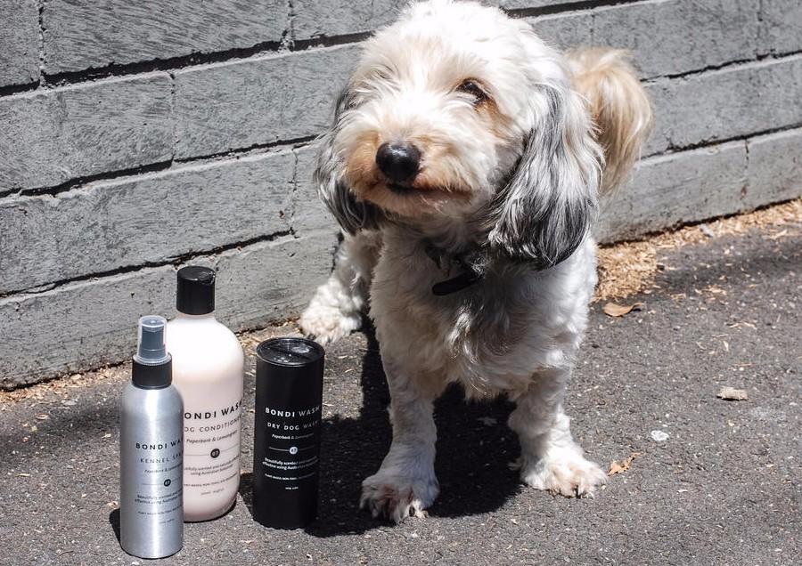 bondi-wash-kennel-spray-paperbark-lemongrass-150ml-dog-range-series_13.jpg