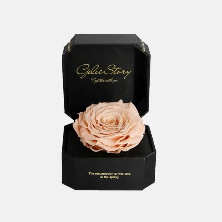 送给曾经最爱的你永生花巨型玫瑰