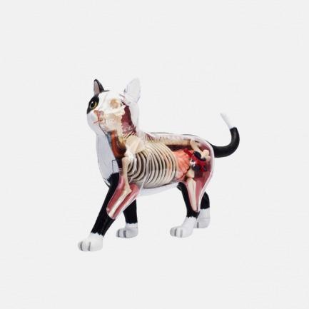 白袜子解剖猫 | 轻松地组装拆卸 天然树脂材质