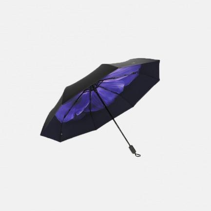 邂逅晴雨三折伞   在颠沛流离中 邂逅纯洁的爱情