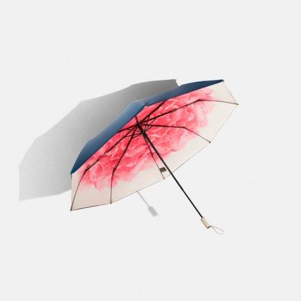 双层小黑伞 | 高效防晒 轻盈牢固【洛荷/浅妃】