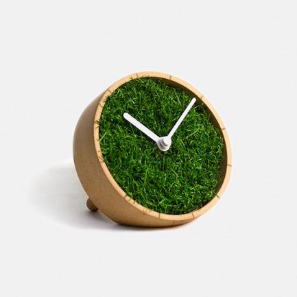 绿野台钟|行走于大自然的绿意时光