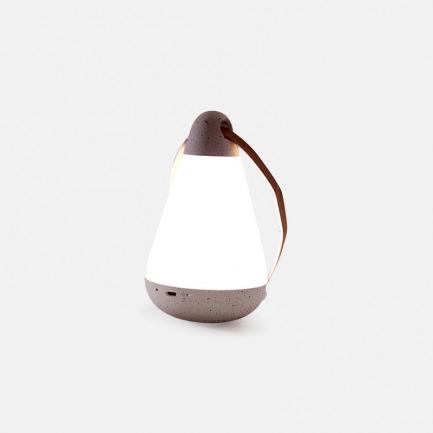 智能光瓶小夜灯 | 全球第一款采用人工智能技术可自动开关的夜灯 APP控制 可立可挂【经典版】