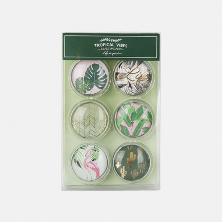 玻璃磁扣磁贴 北欧绿植主题 | 每盒含6枚不同造型的磁扣