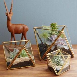 Style a Tray For Your Office Like Will Taylor