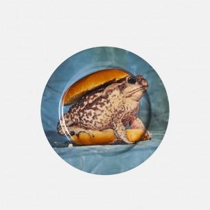 TOILETPAPER系列 餐盘 青蛙