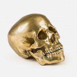 个性搞怪的铝制骷髅摆件 | 时尚大牌DIESEL合作款