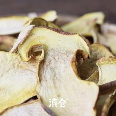 白葱牛肝菌