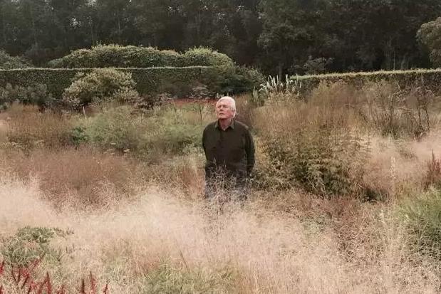 造物者/他用32年造出了一片荒野