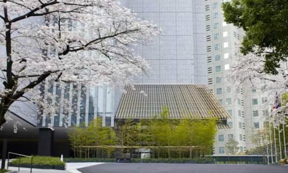 酒店/东京1000元以内的酒店有哪些