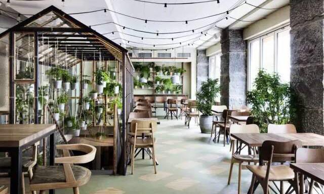 与植物共享的美味餐桌,位于哥本哈根的疗愈温室餐厅/与植物共享的美味餐桌