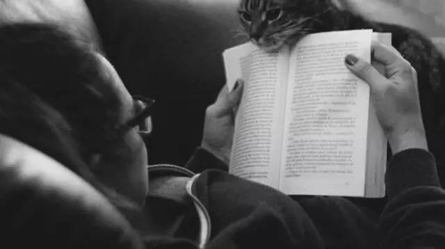 让喜欢做的事情成为生活,比如读书/让喜欢做的事情成为生活,比如读书