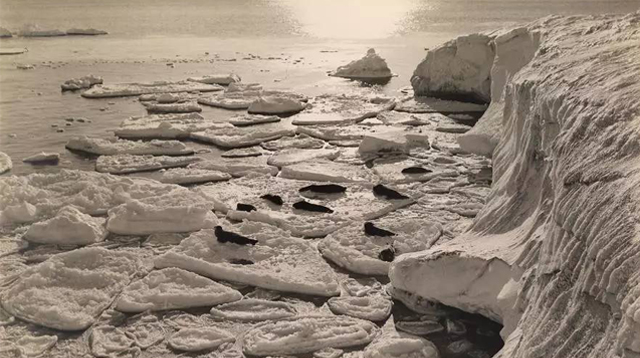 100年前《国家地理》旧照 可能见不到的南极大陆/100年前《国家地理》旧照 可能