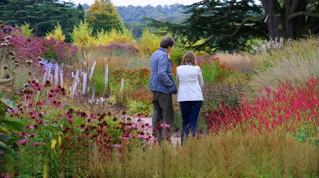 把花园藏进荒野,走近世界顶级园艺师Piet Oudolf/把花园藏进荒野,走近世界顶级园艺