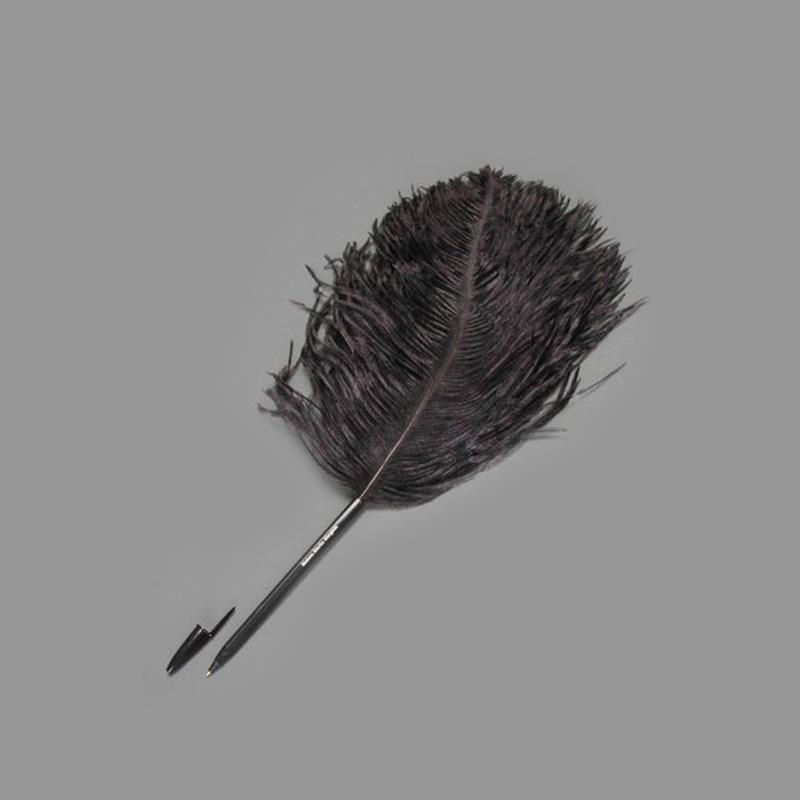 复古中世纪鸵鸟毛圆珠笔 | 黑白两色 书写装饰一体