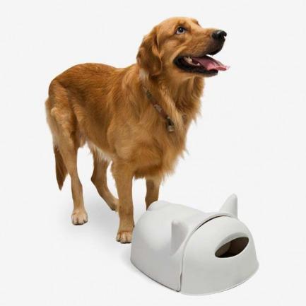 大狗先生狗狗食盆