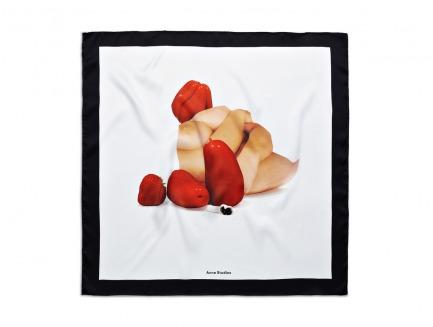 Acne Studios 丝巾