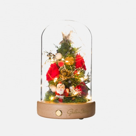 圣诞节带灯永生花礼物 | 进口永生花 限量版