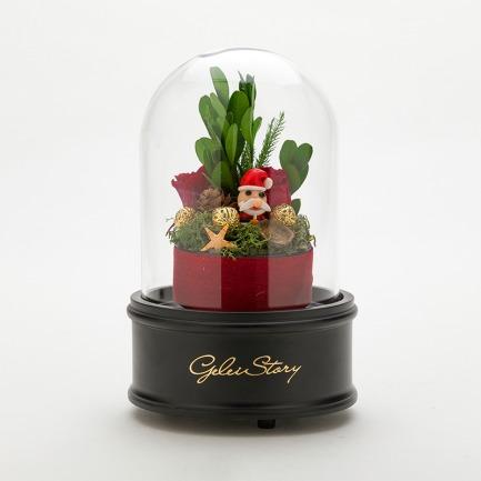 圣诞礼物永生花旋转礼盒 | 进口永生花