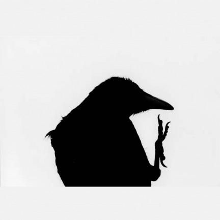 深濑昌久—<鸦>系列1 | 摄影原作,带亲笔签名