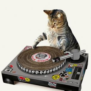 DJ CAT SCRATCH TURNTABLE