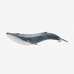 德国思乐schleich蓝鲸模型