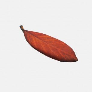 树叶造型手拿包 一片红叶 | 简约的自然趣味 轻盈实用