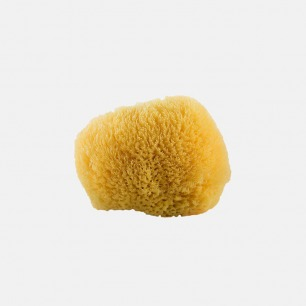 洁面沐浴海绵按摩球 CF3 | 来自加勒比海的天然海绵