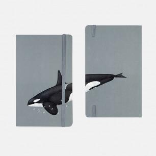 鲸鱼笔记本 原创趣味设计 | 绘有科学插图的精美手帐本