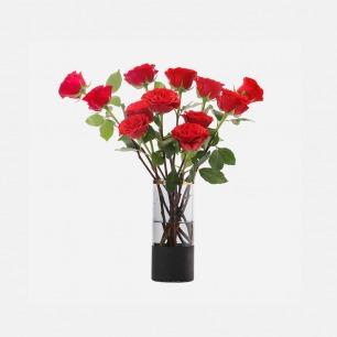 臻爱玫瑰12枝鲜花礼盒 | 十二支玫瑰,十二分喜爱