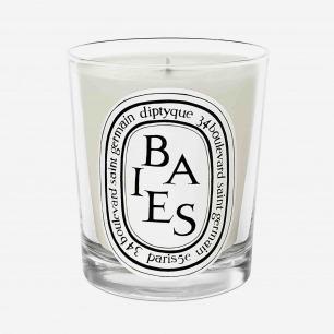 Diptyque 浆果味香氛蜡烛