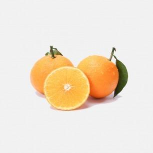 爱媛果冻橙 | 可以吸的橙子