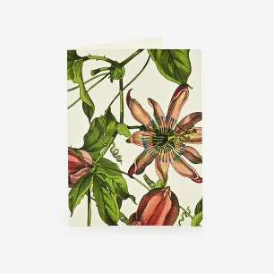 Aviary Plum Notecards