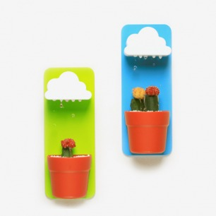 """Rainy Pot 会""""下雨""""的云朵花盆"""