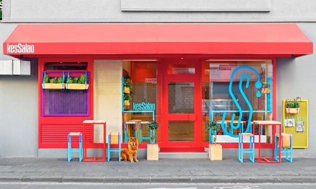 这家餐厅把所有你能想到的颜色都泼上去了/这家餐厅把你能想到的颜色都泼上了