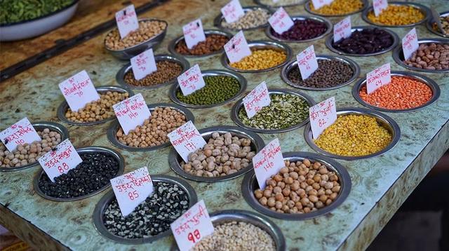 从素食开始的一份印度出行指南/从素食开始的一份印度出行指南