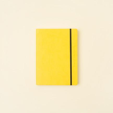 颜色/黄色