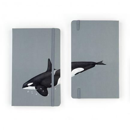 颜色/齿鲸笔记本