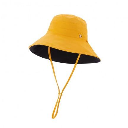 颜色/姜黄色