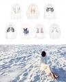 【Silver Lining 独立设计】ZOO系列丝绵衬衫-花与爱丽丝