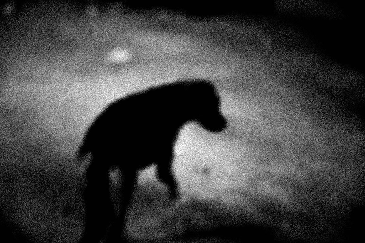 探访印度 黑白写实组照四 | 深入印度的纪实影像作品