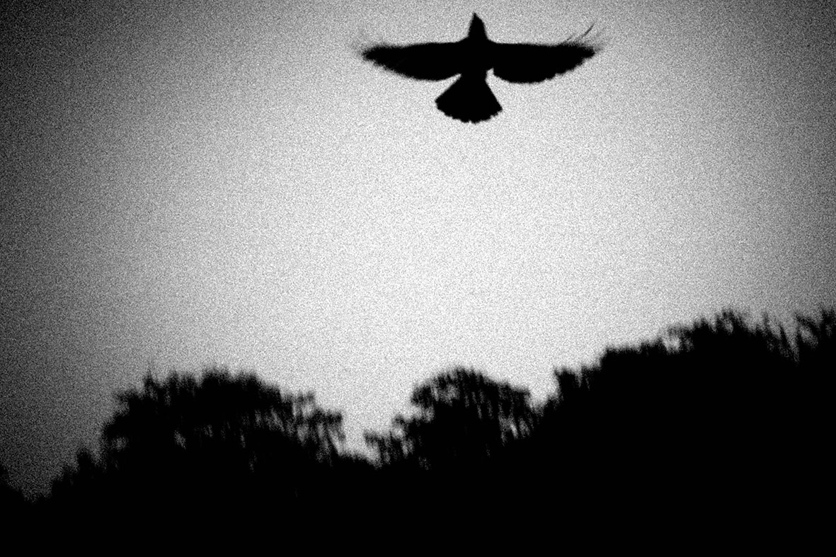 探访印度 黑白写实组照三 | 深入印度的纪实影像作品